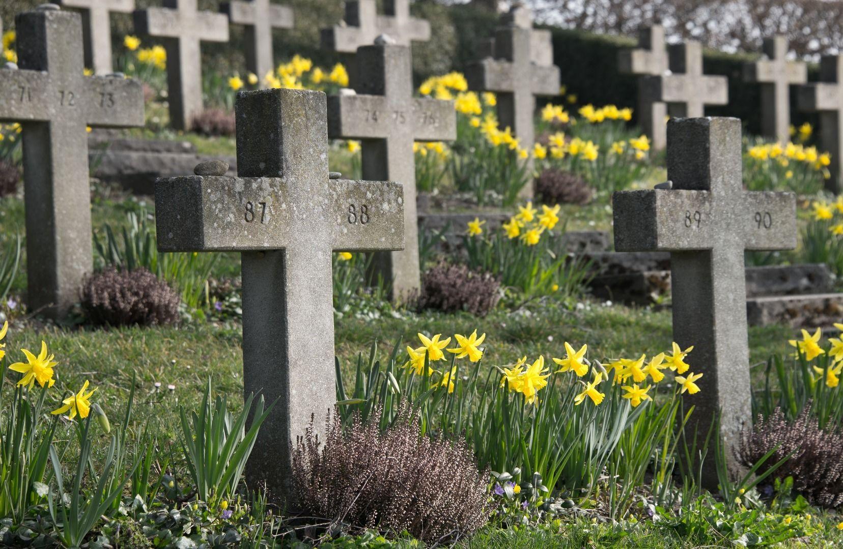 高齢者は増えているのに、なぜ「葬儀社の倒産」が相次ぐのか?