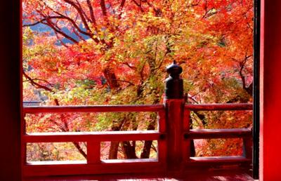【2020年】初詣の参考に!運気のあがる神社の探し方