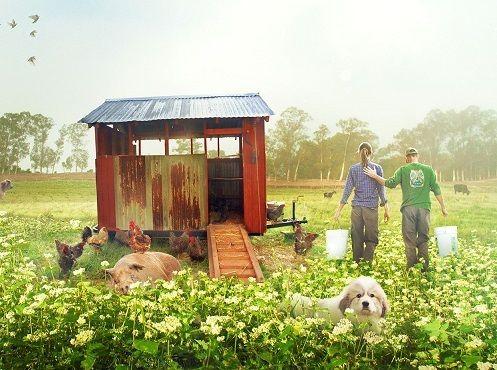 投資家からの資金調達で農場を拓いた『ビッグ・リトル・ファーム 理想の暮らしのつくり方』
