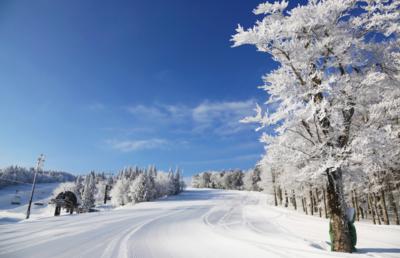 島根県の2スキー場、「暖冬」と「新型コロナ」に耐えきれず倒産