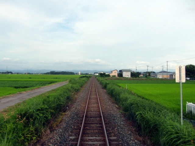 JR東日本は「救世主」になれるか。業績悪化の千趣会とコラボ