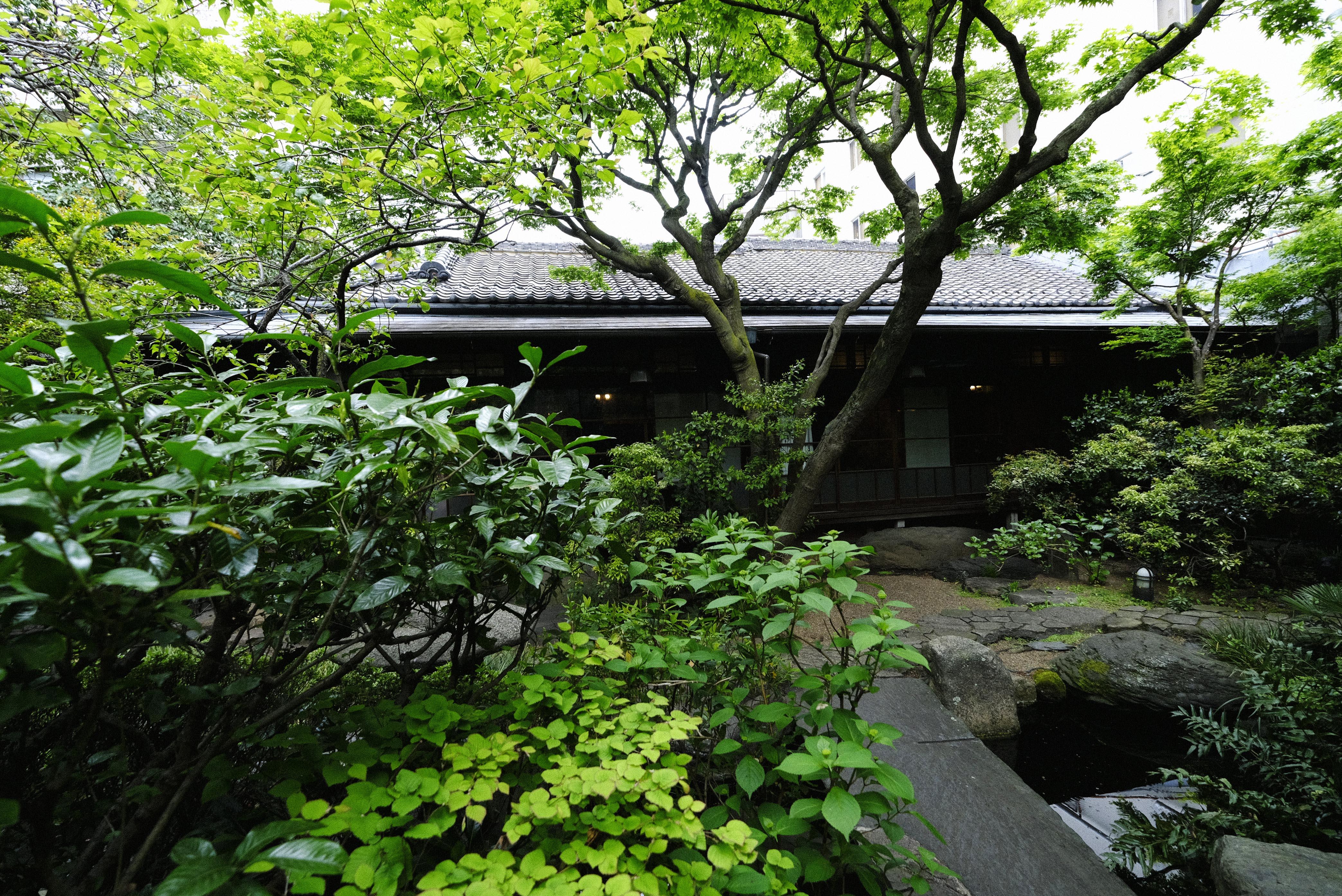 東京・池之端「水月ホテル鷗外荘」 クラウドファンディングが拓く活路|産業遺産のM&A