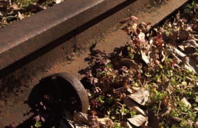 首都圏廃線物語 かつて西武鉄道が所有した休止線、廃線を訪ねて